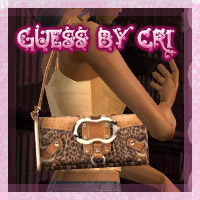 bag_guesscollection_3