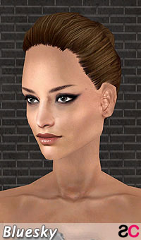 hair_bls_collectedtiedstyle_darkbrown