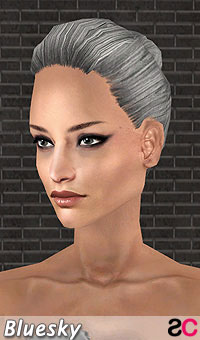 hair_bls_collectedtiedstyle_grey
