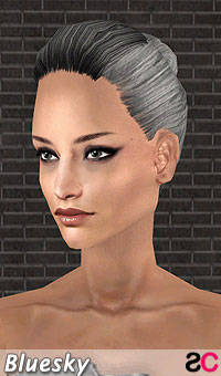 hair_bls_collectedtiedstyle_greyblack